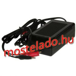 RedDot 6V 0.3A zselés akkumulátor töltő